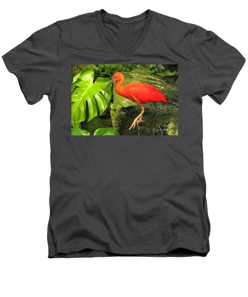 Scarlet Ibis Men's V-Neck T-Shirt