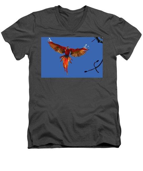 Scarlet Macaw On The Osa Peninsula Men's V-Neck T-Shirt