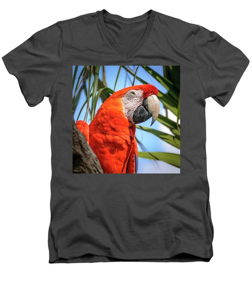 Men's V-Neck T-Shirt featuring the photograph Scarlet Macaw by Steven Sparks