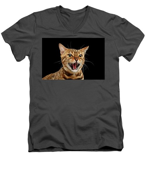 Men's V-Neck T-Shirt featuring the photograph Scary Hissing Bengal Cat On Black Background by Sergey Taran