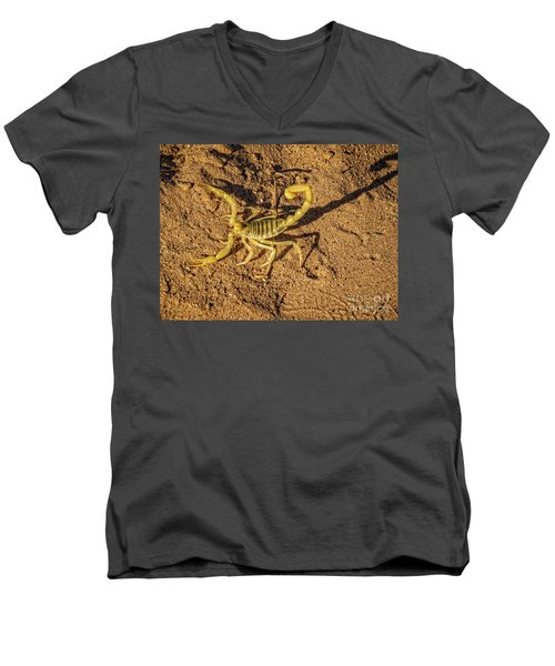 Scorpion Men's V-Neck T-Shirt by Robert Bales