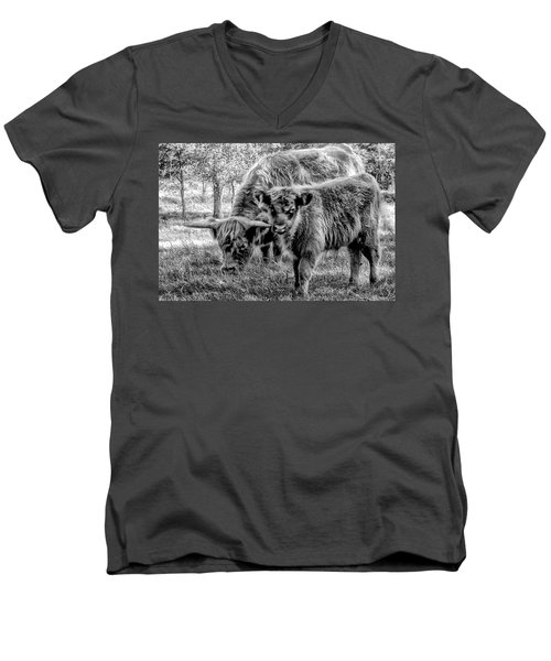 Scottish Highland Cattle Black And White Men's V-Neck T-Shirt by Constantine Gregory
