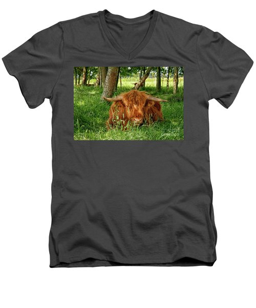 Men's V-Neck T-Shirt featuring the photograph Scottish Higland Cow by Patricia Hofmeester