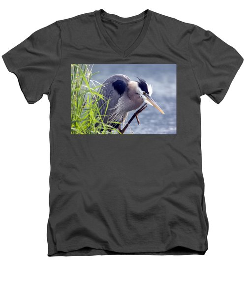 Scratch The Itch Men's V-Neck T-Shirt