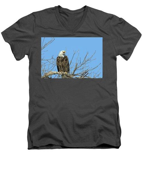 Screeching Eagle Men's V-Neck T-Shirt by Brook Burling