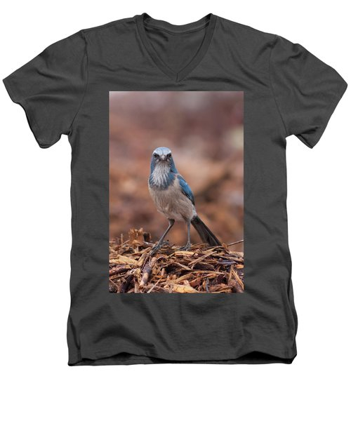 Scrub Jay On Chop Men's V-Neck T-Shirt