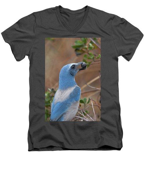 Scrub Jay With Acorn Men's V-Neck T-Shirt