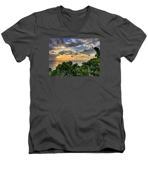 Sea Grape Sunrise Men's V-Neck T-Shirt