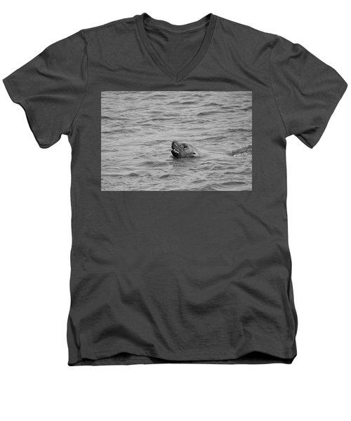 Sea Lion In The Wild Men's V-Neck T-Shirt