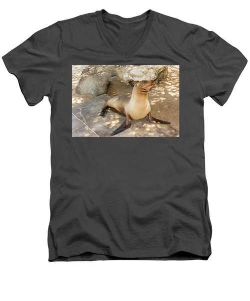 Men's V-Neck T-Shirt featuring the photograph Sea Lion On The Beach, Galapagos Islands by Marek Poplawski