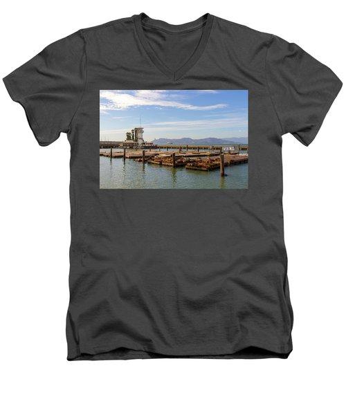 Sea Lions At Pier 39 In San Francisco Men's V-Neck T-Shirt