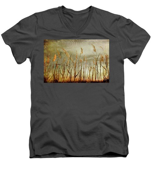Sea Oats And Sky On Outer Banks Fx Men's V-Neck T-Shirt by Dan Carmichael