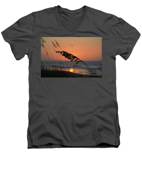 Sea Oats At Sunrise Men's V-Neck T-Shirt