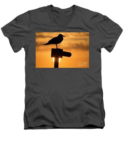 Seagull At Sunset Men's V-Neck T-Shirt