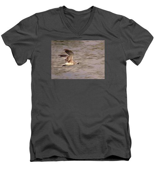 Seagull Flight Men's V-Neck T-Shirt