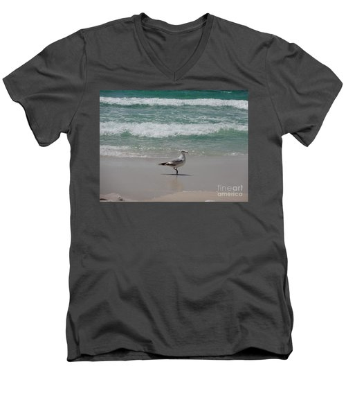 Seagull Men's V-Neck T-Shirt by Megan Cohen