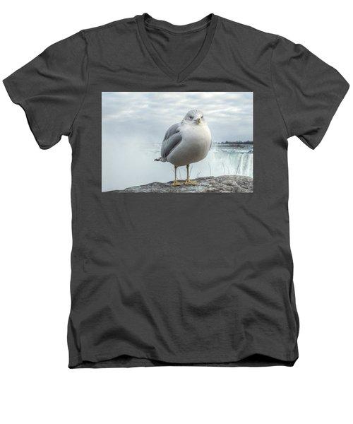 Seagull Model Men's V-Neck T-Shirt