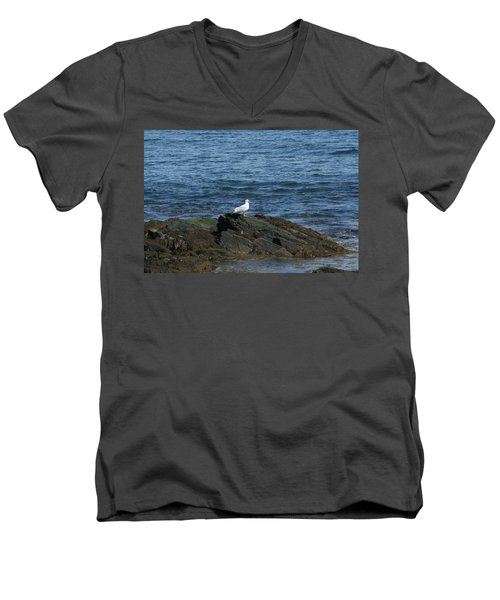 Men's V-Neck T-Shirt featuring the digital art Seagull On The Rocks by Barbara S Nickerson