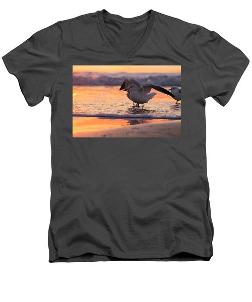 Seagull Stretch At Sunrise Men's V-Neck T-Shirt