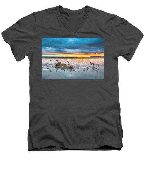 Seagull Sunset Men's V-Neck T-Shirt
