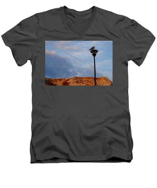 Seagull's Post Men's V-Neck T-Shirt