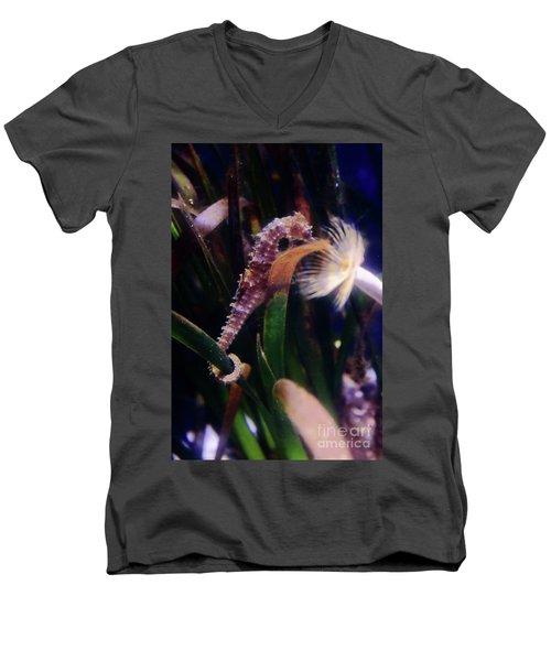 Seahorse Men's V-Neck T-Shirt by Ana Mireles