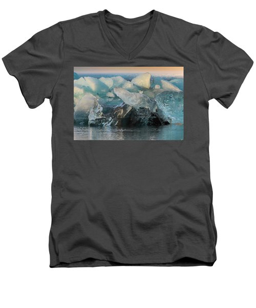 Seal Nature Sculpture Men's V-Neck T-Shirt by Allen Biedrzycki