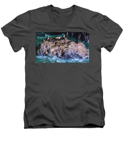 Men's V-Neck T-Shirt featuring the photograph Seal  Rock by Jonny D