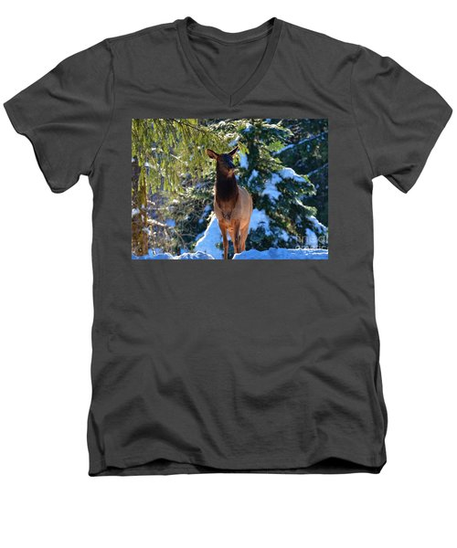 Searching For Food Men's V-Neck T-Shirt