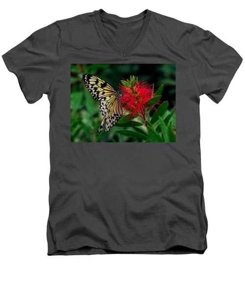 Men's V-Neck T-Shirt featuring the photograph Searching For Nectar by Nick Bywater