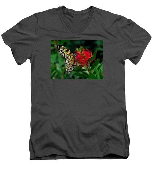 Searching For Nectar Men's V-Neck T-Shirt
