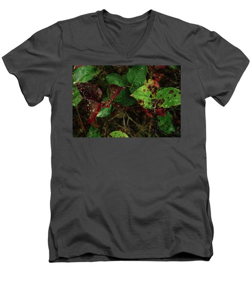 Season Color Men's V-Neck T-Shirt
