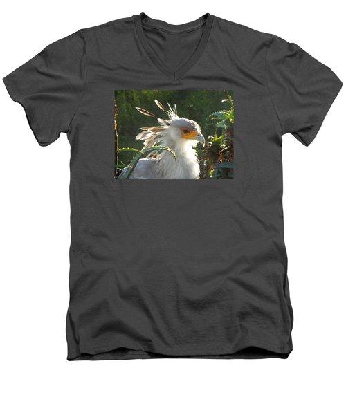 Secretary Bird Men's V-Neck T-Shirt