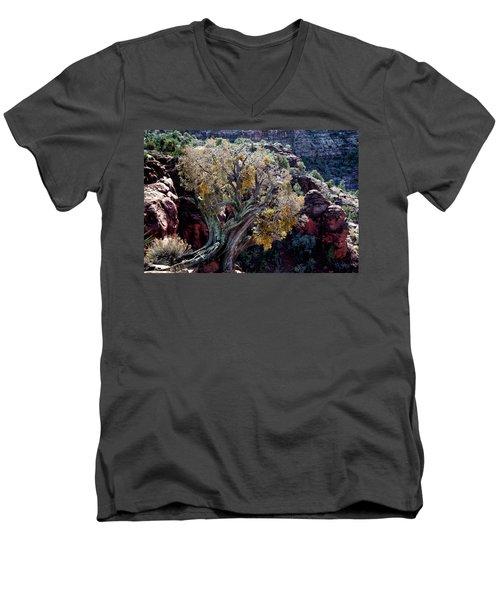 Sedona Tree #2 Men's V-Neck T-Shirt