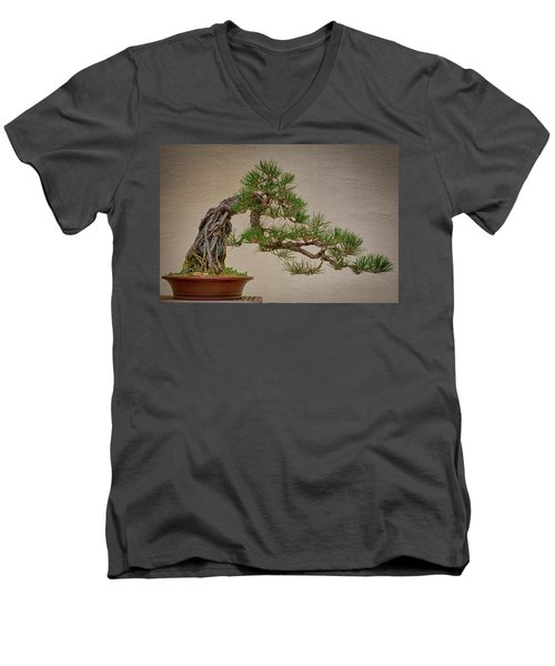 Semi-cascade Men's V-Neck T-Shirt by David Cote