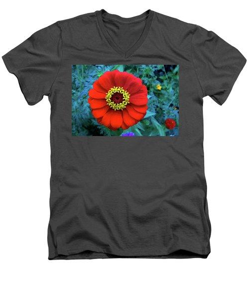 September Red Beauty Men's V-Neck T-Shirt