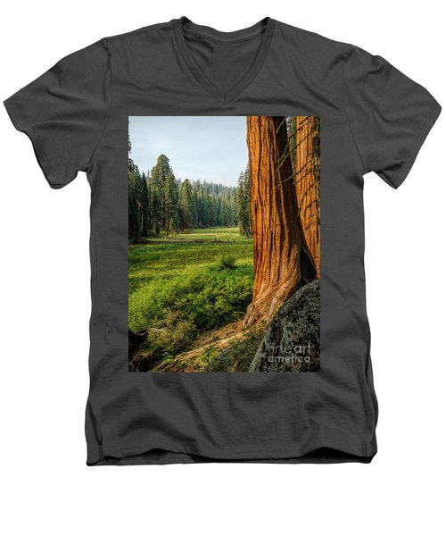 Sequoia Np Crescent Meadows Men's V-Neck T-Shirt