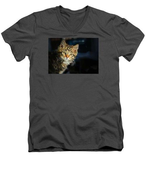 Serious Cat Portrait Men's V-Neck T-Shirt