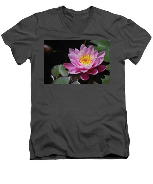 Shades Of Pink Men's V-Neck T-Shirt