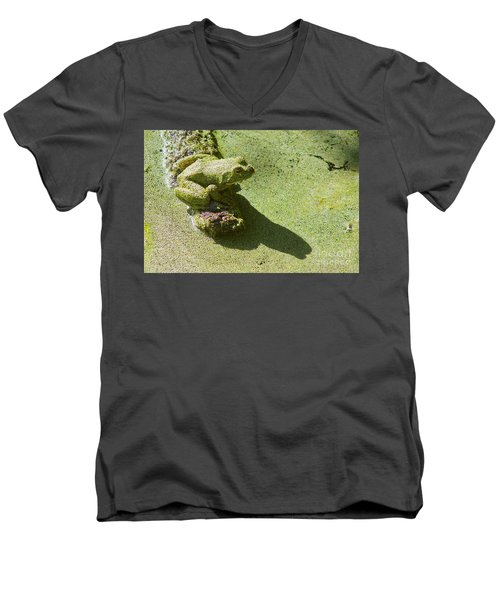 Shadow And Frog Men's V-Neck T-Shirt