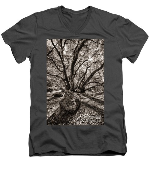 Men's V-Neck T-Shirt featuring the photograph Shadow Tree by Vincent Bonafede