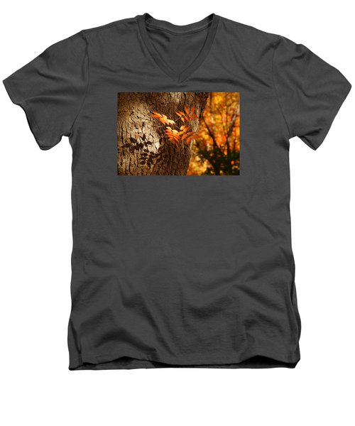 Fall Color Men's V-Neck T-Shirt by Tam Ryan