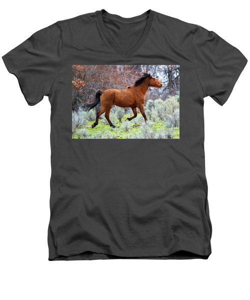 Men's V-Neck T-Shirt featuring the photograph Shaggy And Proud by Mike Dawson