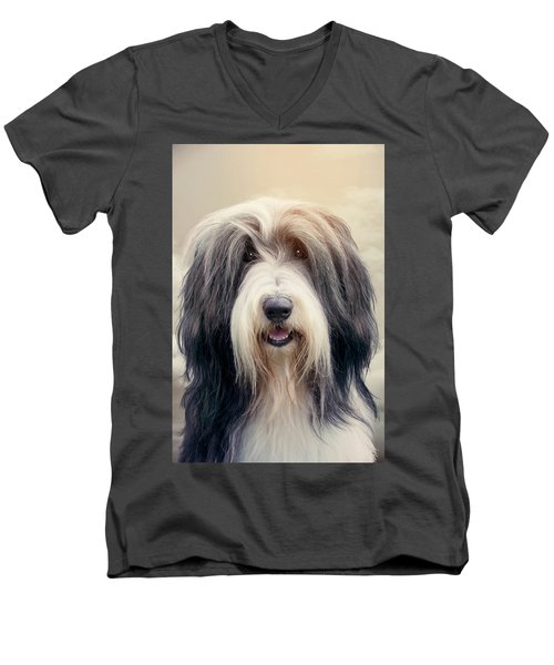 Shaggy Dog Men's V-Neck T-Shirt