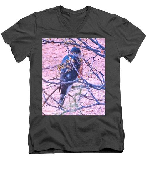 Sharp-shinned Hawk Hunting In The Desert 2 Men's V-Neck T-Shirt