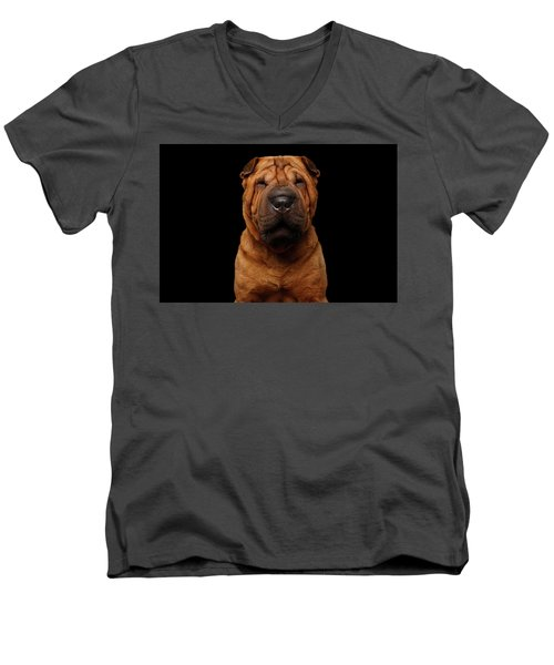 Men's V-Neck T-Shirt featuring the photograph Sharpei Dog Isolated On Black Background by Sergey Taran