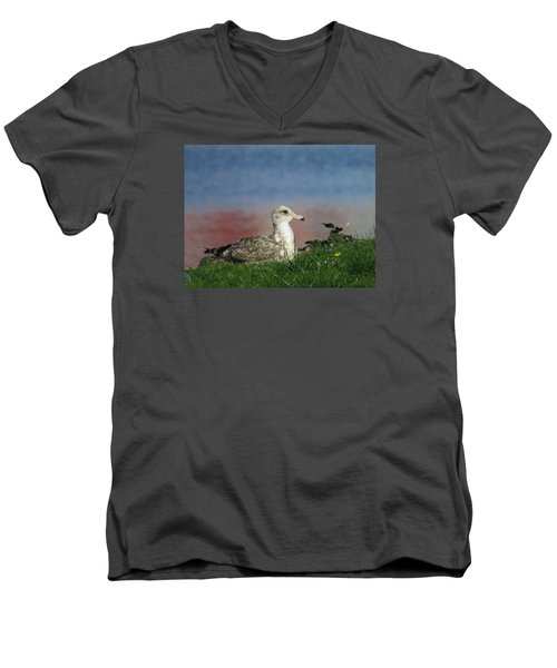 She Who Watches Men's V-Neck T-Shirt