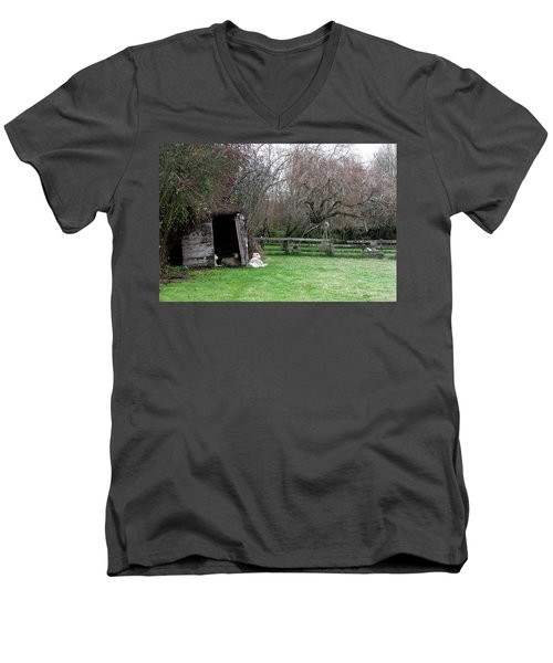 Sheep Shed Men's V-Neck T-Shirt