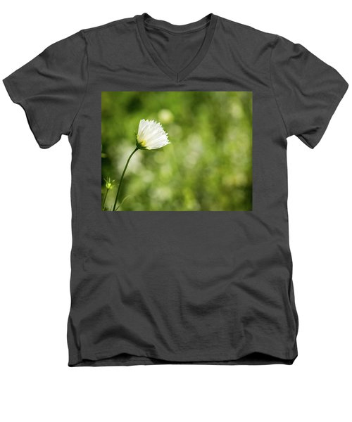 She's Everything I've Ever Wanted Men's V-Neck T-Shirt by Wade Brooks