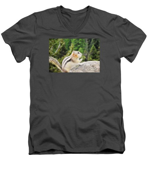 Men's V-Neck T-Shirt featuring the photograph Shhhh Quiet Please by Janie Johnson